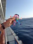 Waving to Roatan, Honduras.  Too choppy for ship to dock.  :(